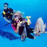 Cayman Island Diver