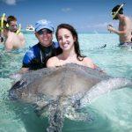 Cayman Island Stingray