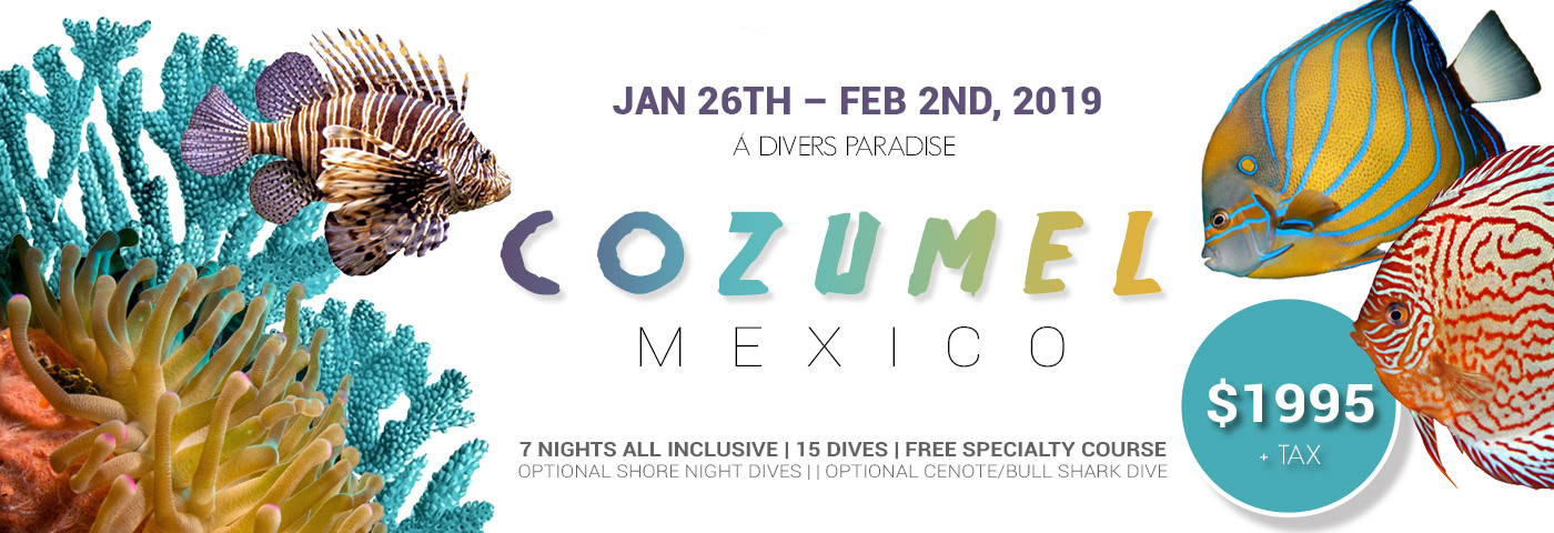 Tropical-Dive-Trip-to-Cozumel-2019