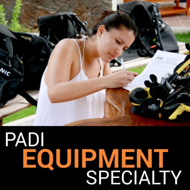 EQUIPMENT-SPECIALTY-624x624