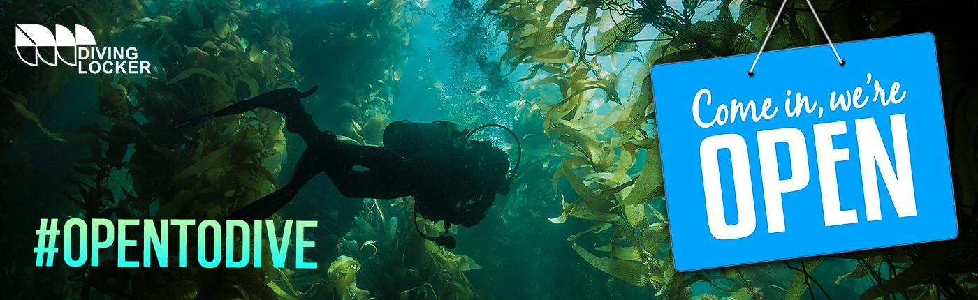 Bc Dive Trips