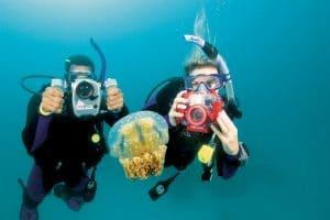 Scuba Diving Blog